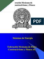 Capítulo 5 Sistemas Energéticos