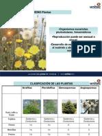 9 Reino Plantae