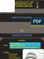 Bur Sites