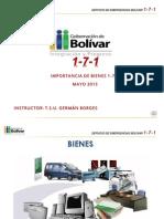 Presentacion Bienes 171 2013
