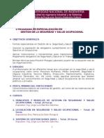 Programa G. de Seguridad Salud Ocupacional Corregido
