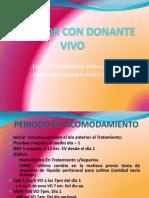 Receptor Con Donanate Vivo 2011