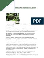La guanábana para Curar el Cáncer