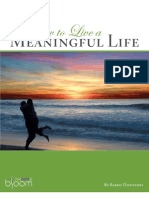 MeaningfulLife eBook