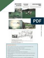 "Ficha Formativa ""Sustentabilidade urbana"" (12.º)"