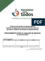 Procedimiento Analisis Riesgos 2012