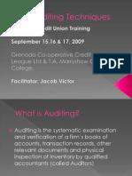 Auditing Techniques