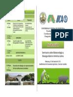 Programa IICA 2013