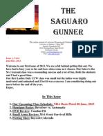 Saguaro Gunner Jan-Mar 2013