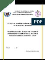 Anteproyecto de Mecanismos i - Castillo