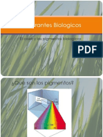 Exp. Colorantes Biologicos