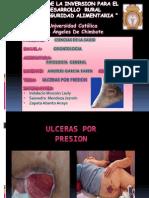 Ulcera Por Presion_saavedra