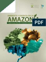 Ambiente y Energia en La Amazonia Dar