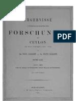 Ueber die Anatomie der Echinothuridea und die Phylogenie der Echinodermen