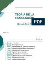 TeoRegulacion GSoto 2013 Partes 1 - 4
