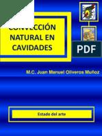CONVECCIÓN NATURAL EN CAVIDADES
