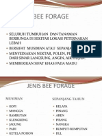 Bee Forage kuliah