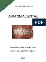 Apostila Anato Dental
