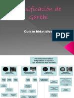 Clasificación de Garbhi
