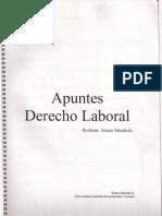 Apunte Laboral I
