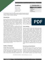 in situ hybridization.pdf