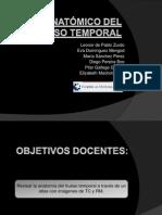 Atlas Anatmico Del Hueso Temporal
