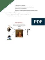 Propiedades de las palabras vinculadas a la redacción.docx