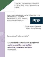Presentacion Para Examen Final Sobre La Memoria