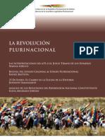 Revolución Plurinacional