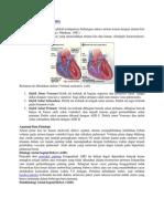 Atrial Septal Defect.docx