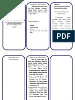 Leaflet Chikungunya