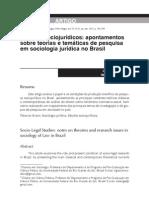 MADEIRA, Lígia Mori  e  ENGELMANN, Fabiano. Estudos sociojurídicos_apontamentos sobre teorias e temáticas de pesquisa em sociologia jurídica no Brasil.