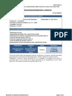 Informe 8 (1) Final