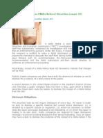Disclosure Obligations l Wells Notices l Securities Lawyer 101