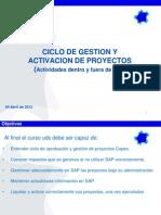 120404 Ciclo Proyecto y Gestion en SAP