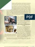 22 - Cap. 8 - Un Mamut y Un Carnotaurus Como Mascotas - Parte 2