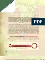 29 - Cap. 10 - Los pequeños de ARN - el poder del silencio - Parte 3