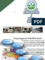 Program Kota Sehat