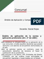 Clases II (Ambito de Aplicacion y Competencia)
