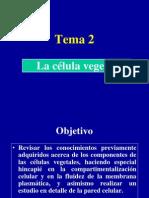 Tema 2. La Celula Vegetal