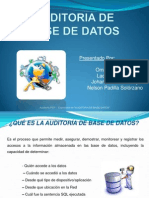 Expo Audt Base de Datos