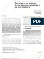 Artigo_cebola_2006.pdf