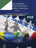 Sánchez Galindo estudio-ciencias-penales