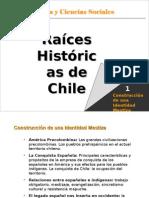 Aborigenes de Chile