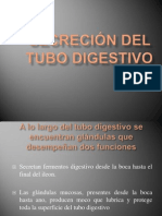 Digestion 4