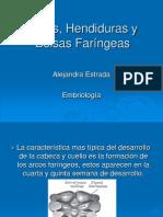 arcoshendidurasybolsasfarngeas-091019212100-phpapp02