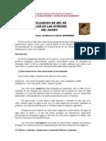 Utilizacon Del Gel de Silice en Las Vitirinas de Un Museo35_texto11