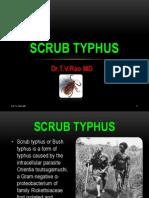 Scrub typhus.