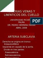 ARTERIAS Y VENAS DEL CUELLO - Dr. Herrera