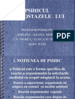 psihicul